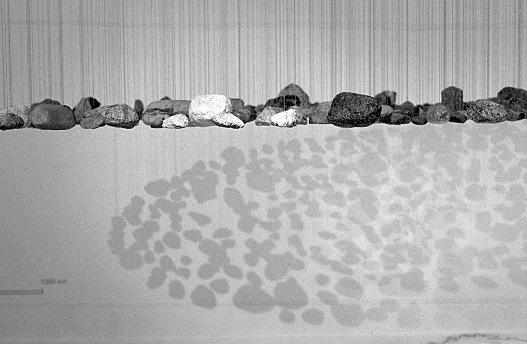 Geest, Landesmuseum für Natur und Mensch, 2002