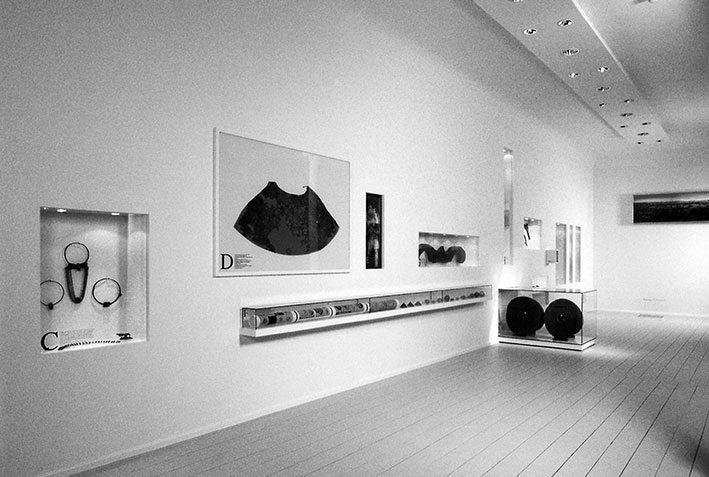 Moor, Landesmuseum für Natur und Mensch, 1999